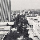 @1976 - Security Pacific Bank Building / Pedestrial Mall***